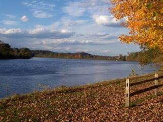 lake and fall leaves